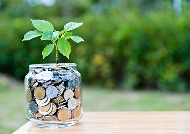 Plant growing from coin jar symbolizing student's efforts in grant writing