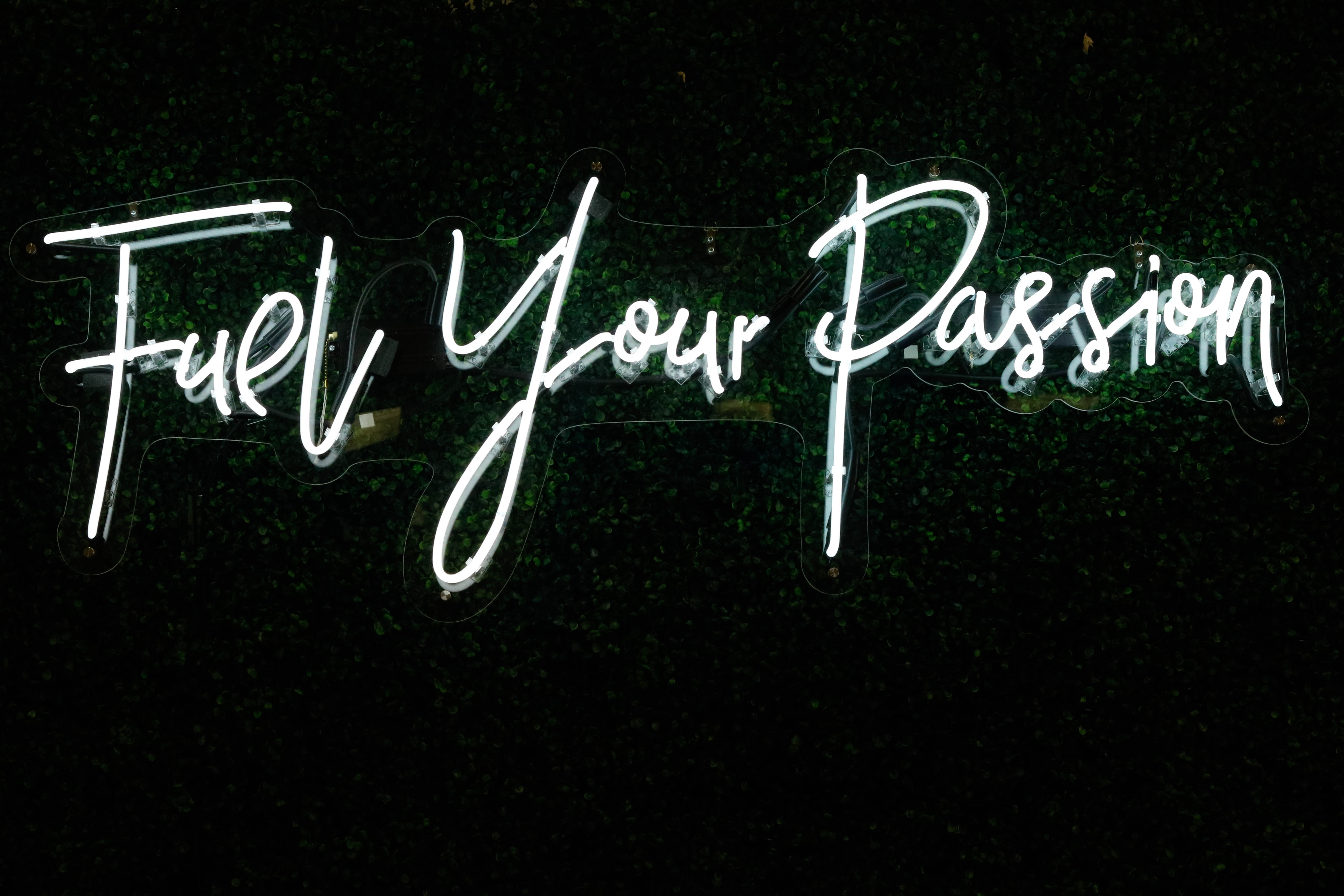 Follow your passion neon writing
