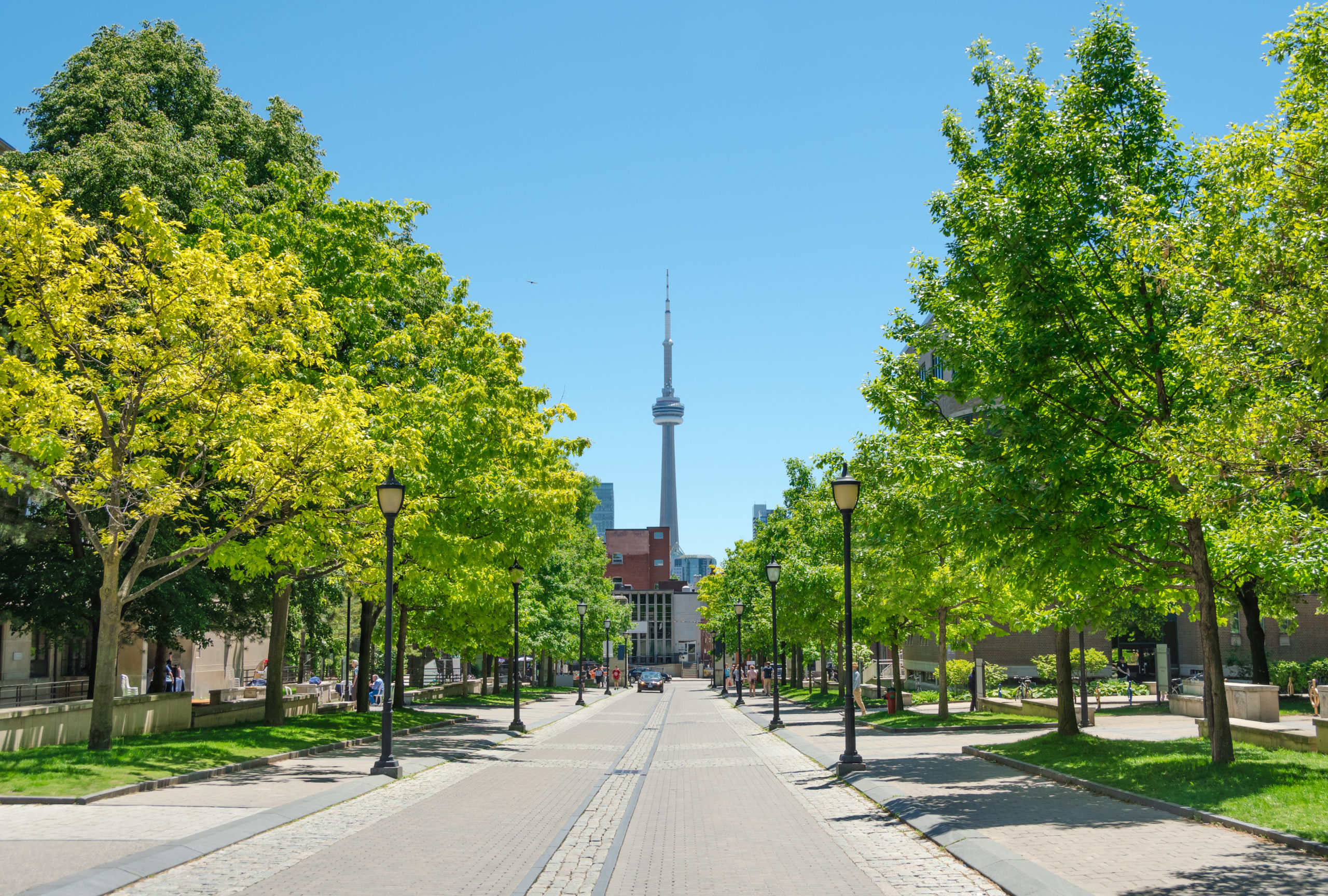 The campus at the University of Toronto in Toronto, Ontario