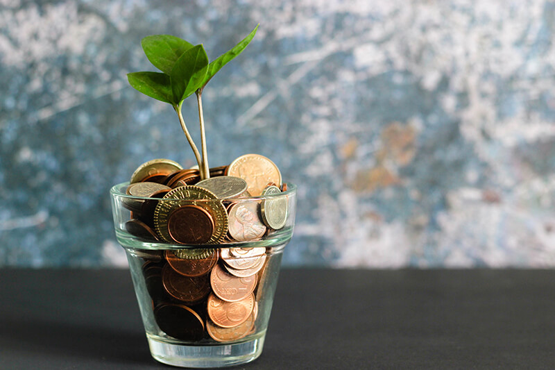 Plant pot full of coins on how to save money in college